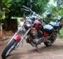 Virago 250cc 98/99