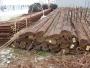 vergalhões aço para construções civis 70 tons.