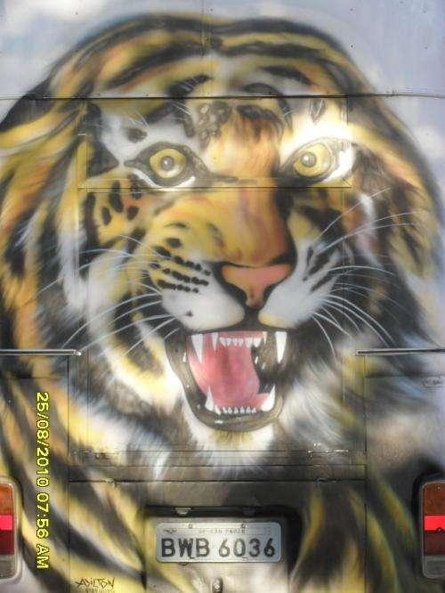Pintura em geral e artística em fachadas de comércio e residência