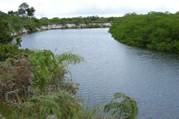 Fotos de 491 hectares na costa do descobrimento. 5