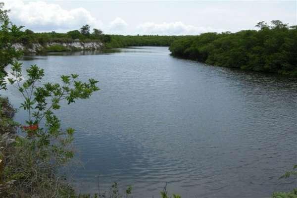 Fotos de 491 hectares na costa do descobrimento. 4