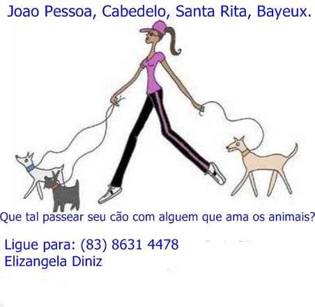 Que tal passear seu cão com alguém que realmente ama estes animais?