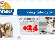 Veterinário Foz do Iguaçu | Hospital e Clínica Veterinária 24h Foz do Iguaçu | ProntoDog