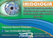 Terapia alternativa - iridologia