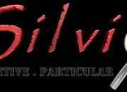 Detetive Particular SP | Detetive Silvio | Detetives SP | investigação particular na Zona