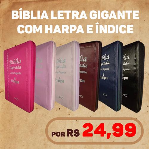 Bíblia letra gigante com harpa cristã exclusiva
